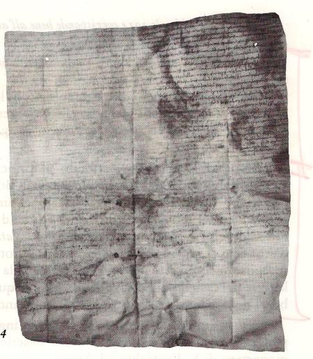 Il diploma di donazione sottoscritto da Borrello (I) nell'anno 1014.