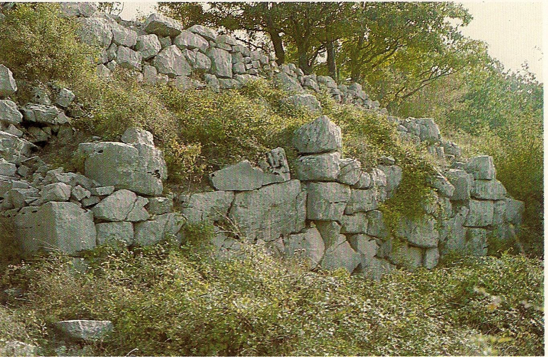 """""""Saipins"""" : mura di cinta a  (lato sud)."""